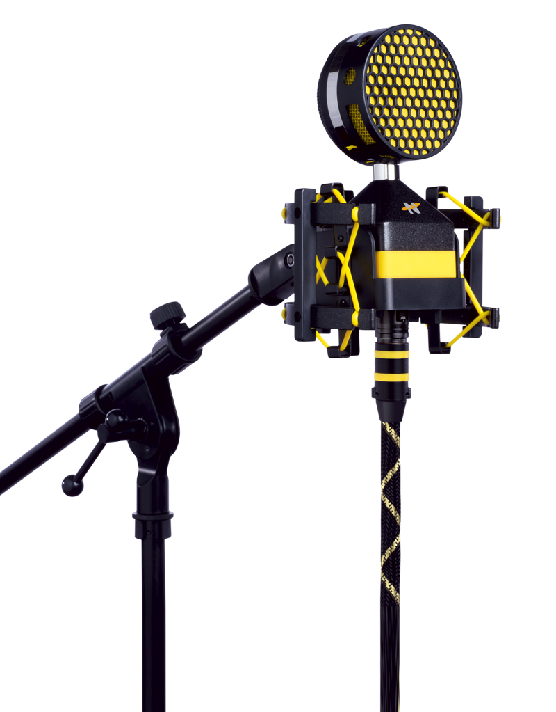 worker bee neat microphones